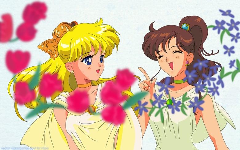 Sailor Moon S: El amor de la princesa Kaguya (1994) Online Completa en Español Latino