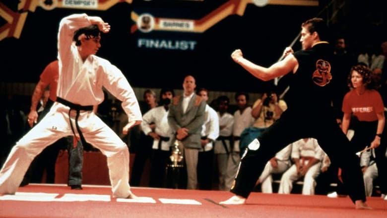 Karate Kid 3: El desafío final (1989) Online Completa en Español Latino