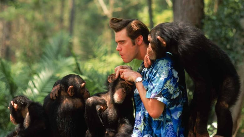 Ace Ventura: Operación África (1995) Online Completa en Español Latino